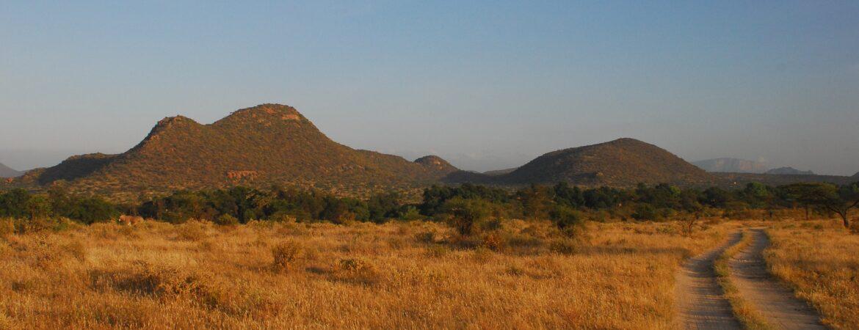 12 Days Best of Uganda & Kenya Wildlife Holiday