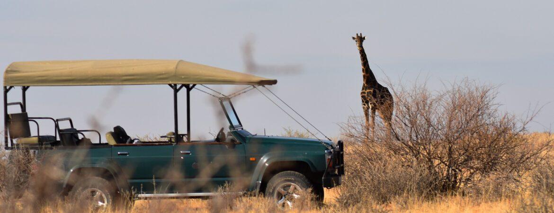 8 Days Tanzania Wildlife & Zanzibar Beach Vacation